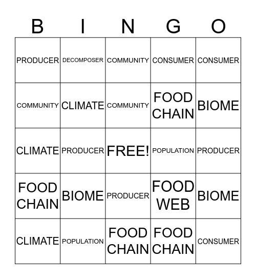 CHAPTER 3 VOCABULARY Bingo Card