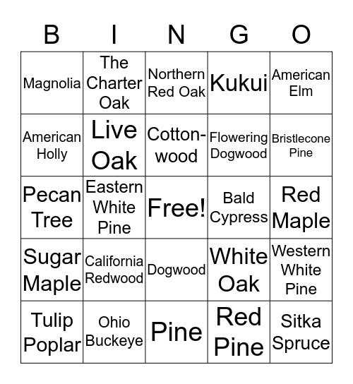 State Tree Bingo Card