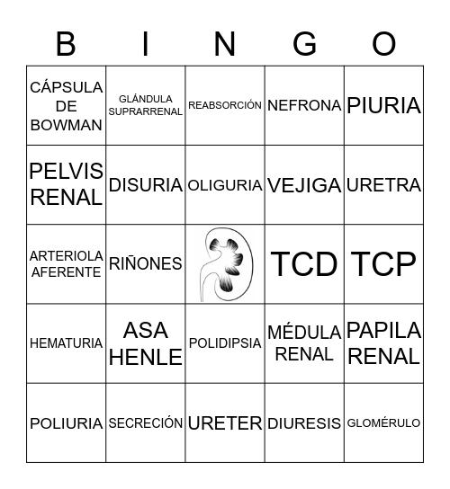EXCRETOR Bingo Card