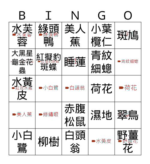 美術館春季健走 Bingo Card