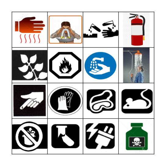 Lab Safety Symbols and Equipment BINGO Card