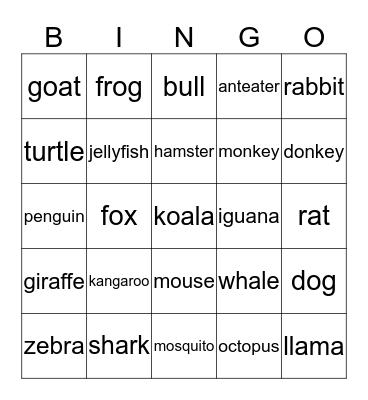 Animals! Bingo Card