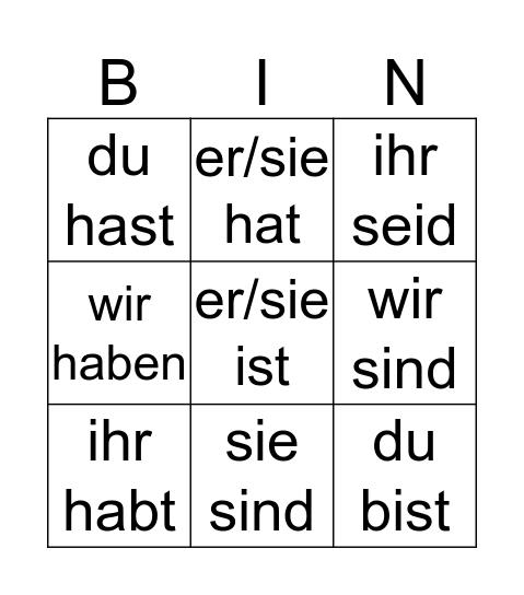 bin/haben Bingo Card