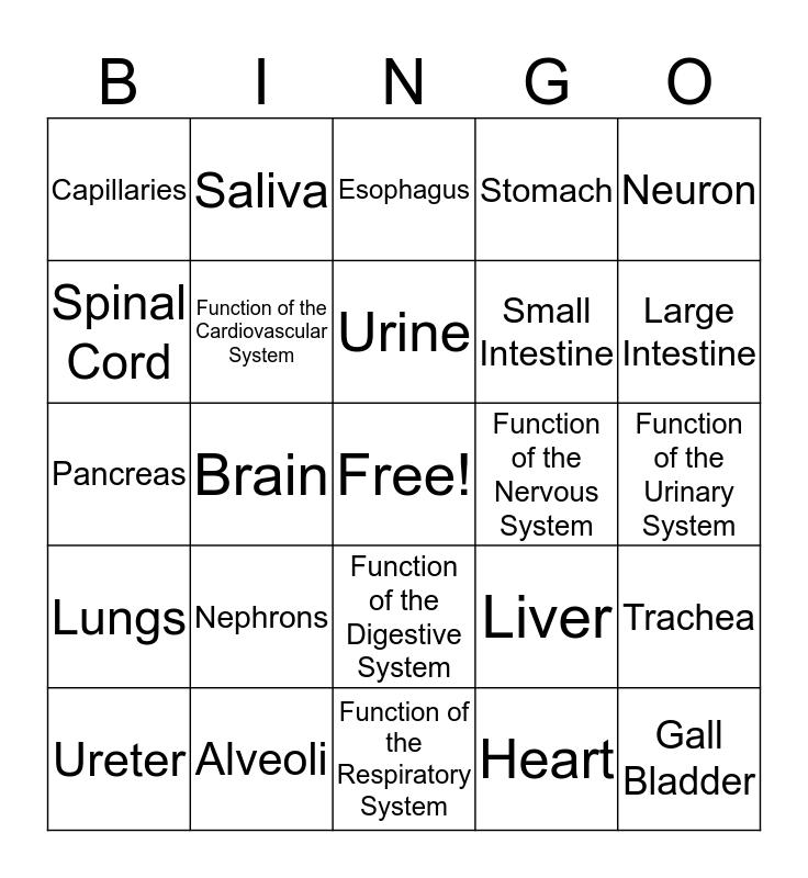 Organ Systems BINGO Card