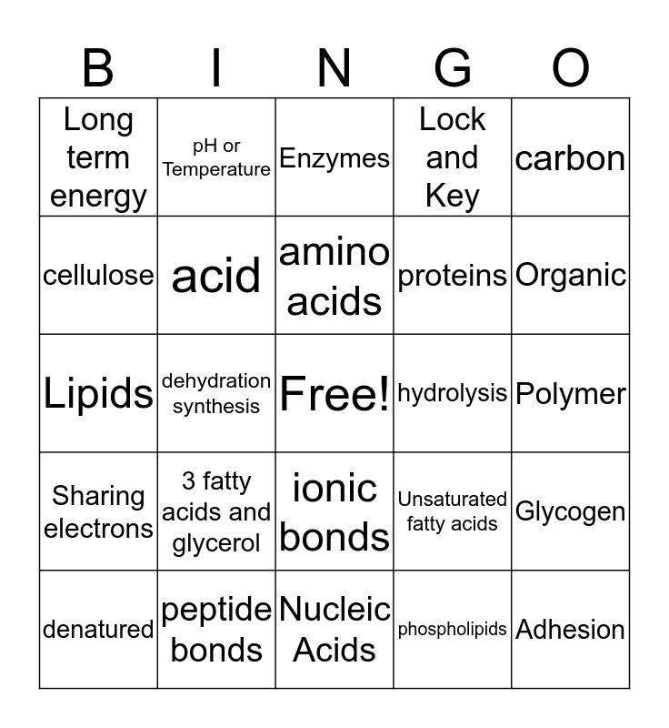 Macromolecules Bingo Card