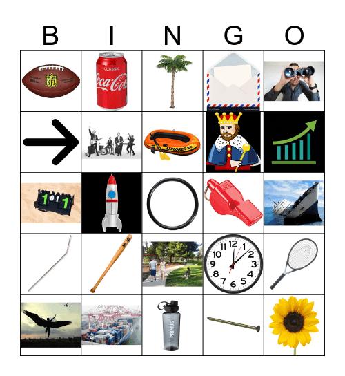HOMONYMS Bingo Card