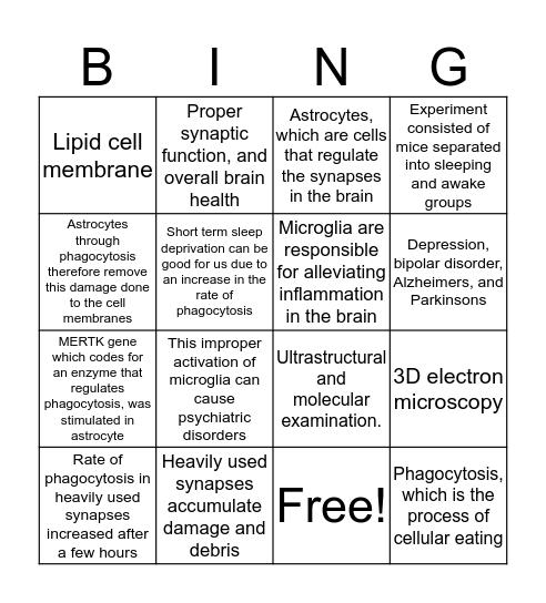 Short-term and long-term sleep deprivation Bingo Card