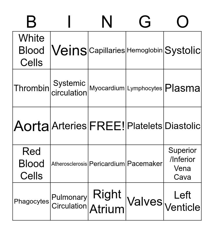 Circulatory System BINGO Card
