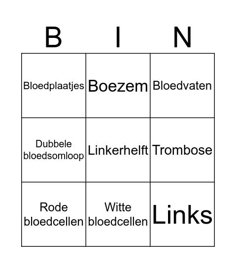 De bloedsomloop  Bingo Card
