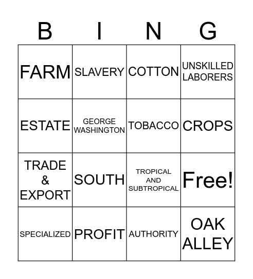 PLANTATION Bingo Card
