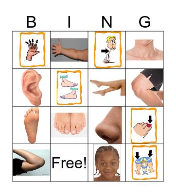 Body Bingo Card