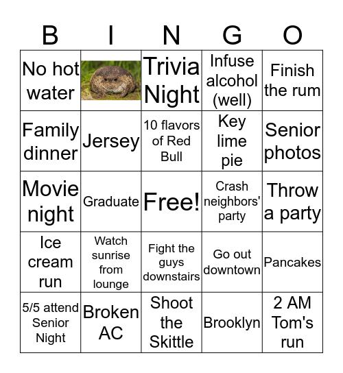 2012 Bingo Card