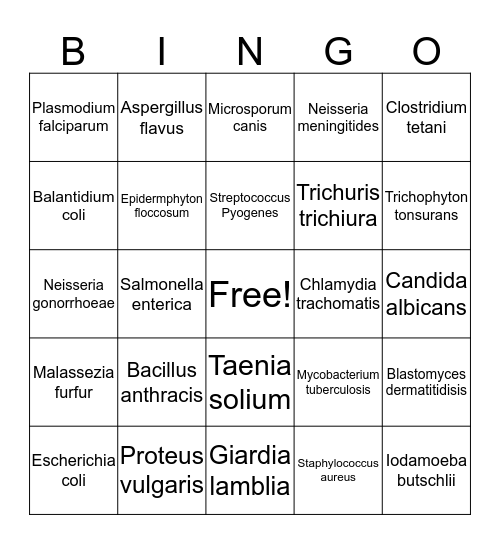 Microbiology Bingo Card