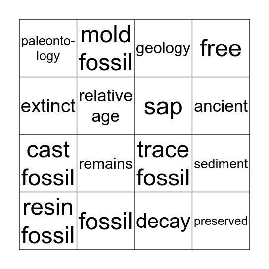 fossil vocabulary bingo Card