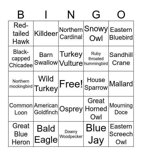 Bird Bingo Card