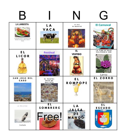 isabela Bingo Card