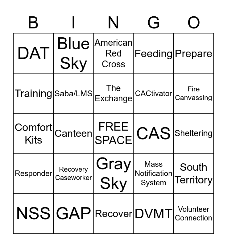 Disaster Cycle Services Bingo Card