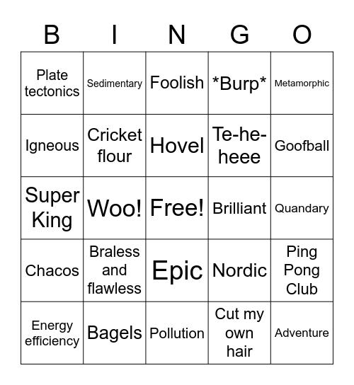 Annika's B-Day Bingo Card