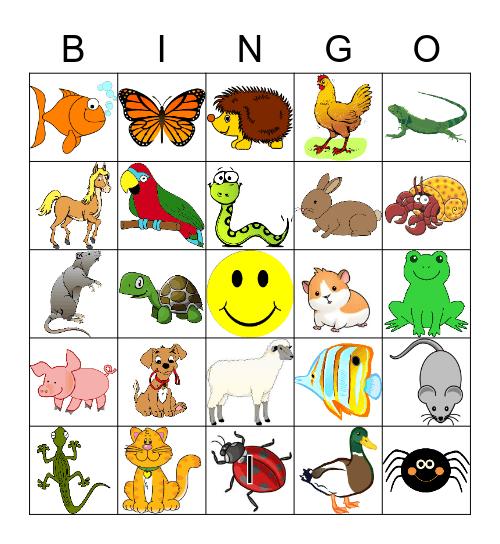 Pets! Bingo Card