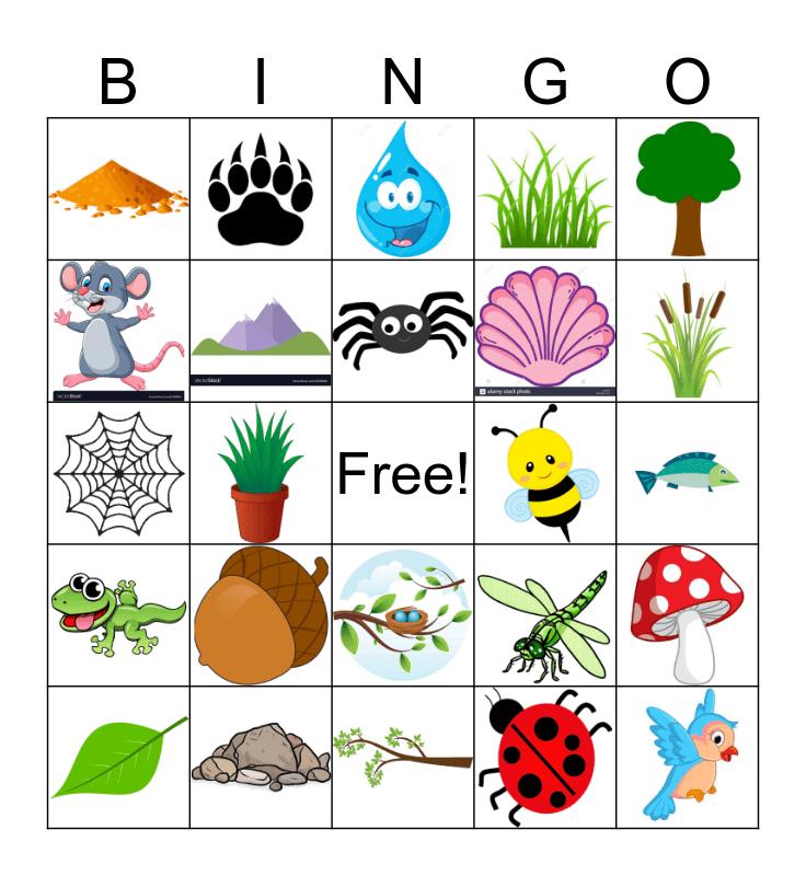 Nature Bingo Card