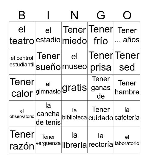 Expressiones con tener y los edificios Bingo Card