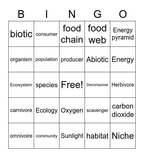 Ecosystems Bingo Card