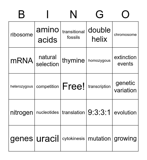 Biology Bingo Card