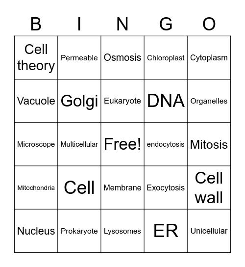 Cells Bingo Card