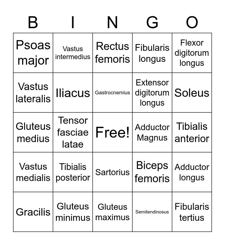 Latin Bingo Card