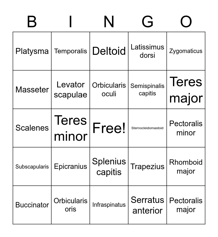 Muscle Bingo Card