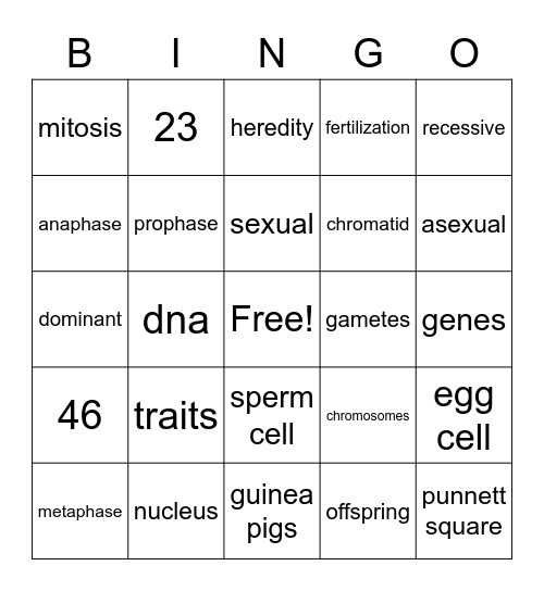 Human Biology Bingo Card