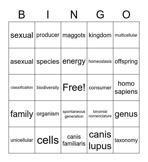 Organism Bingo Card