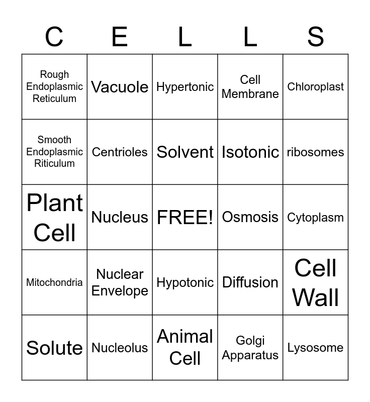 Cell Organelles Bingo Card