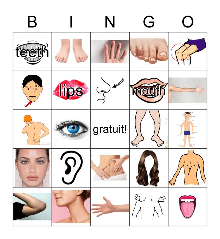 le corps Bingo Card