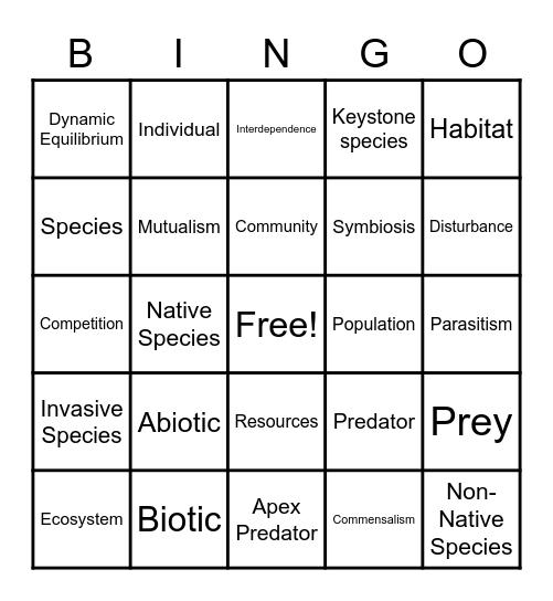 6.6 MiSTAR Vocabulary Bingo Card