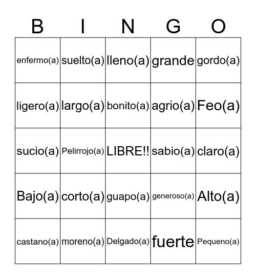Adjectivos Bingo Card