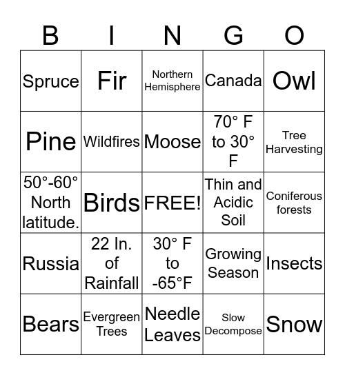 Taiga Bingo Card