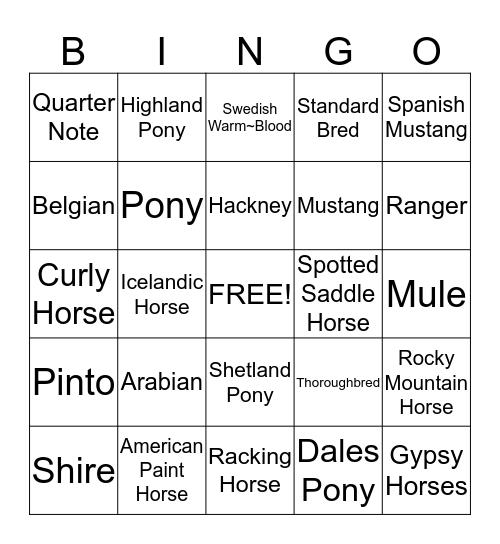 Horse Breeds Bingo Card