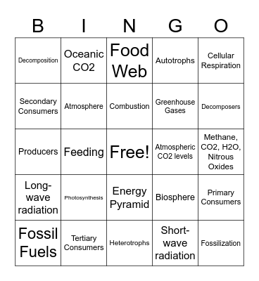 Topic 4 Bingo Card