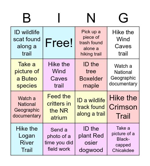 TWS Activity Bingo Card Bingo Card