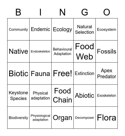 Terminology Bingo Card
