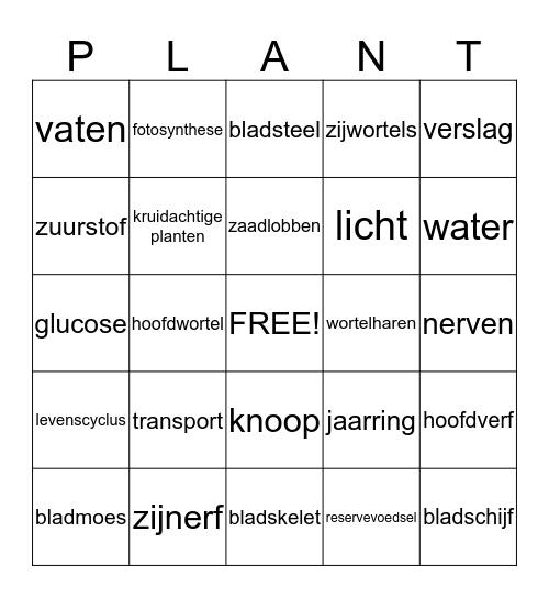 Planten Bingo Card