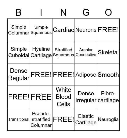 Tissue Matching Bingo Answer Key Bingo Card
