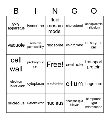 Cell Structures Bingo Card