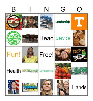Union County 4-H Bingo Card