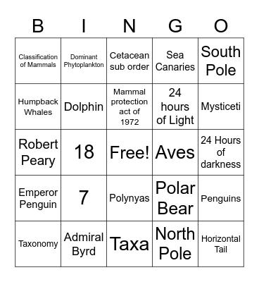 Polar Seas Bingo Card