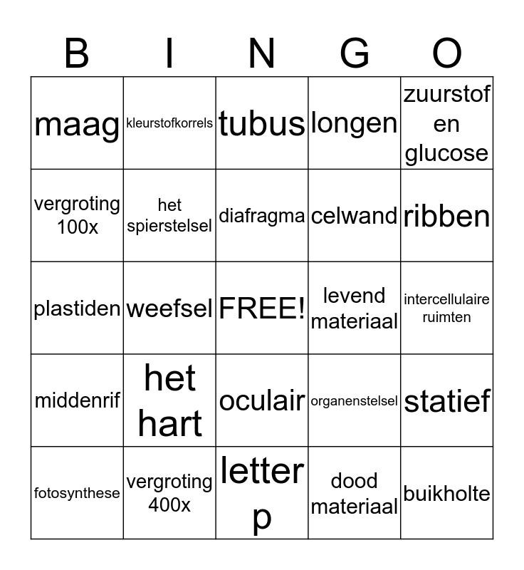 Organen en cellen Bingo Card