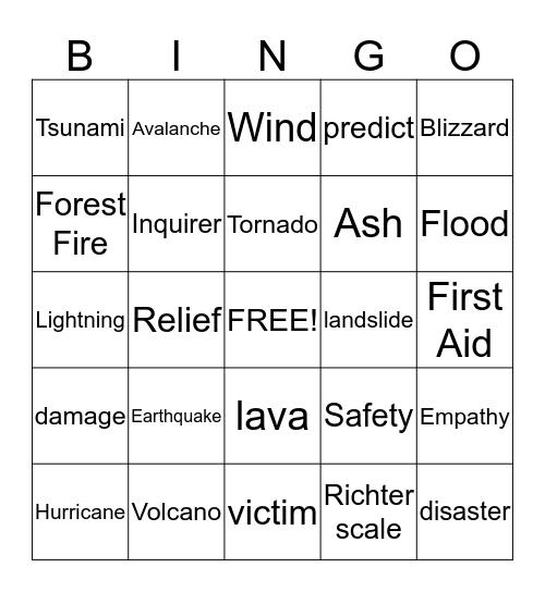 Disaster Detectives Bingo Card