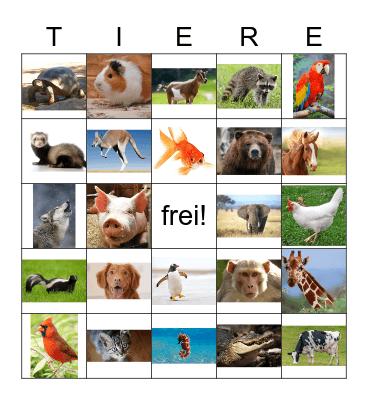 Tiere Bingo Card