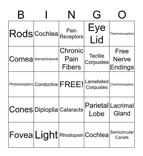Unit 3 Review - Round 2 Bingo Card
